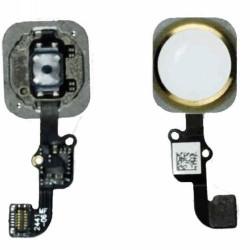 Fotocamera Posteriore iPhone 4 con Flash Ricambio Pari all'originale